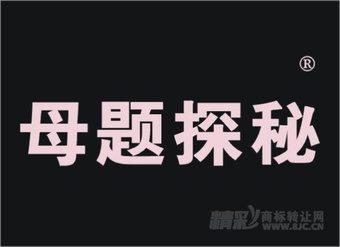 16-0285 母题探秘
