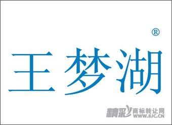 16-0764 王梦湖