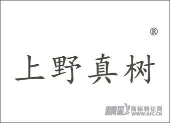 20-0538 上野真树
