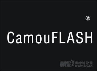 22-0013 CAMIU  FLASH