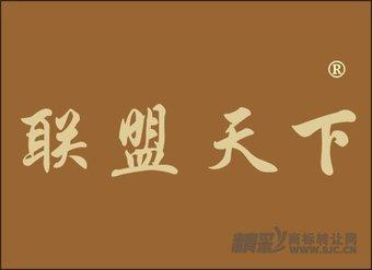 38-0036 联盟天下