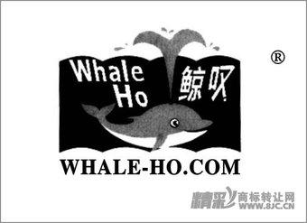 38-0091 鲸叹