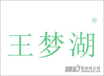 41-0153 王梦湖
