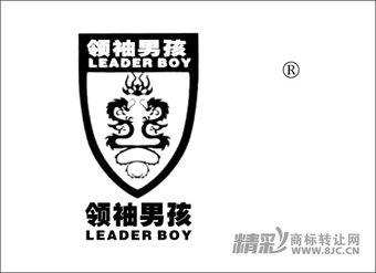 41-0384 领袖男孩