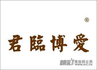 45-0020 君临博爱