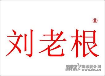 45-0077 刘老根