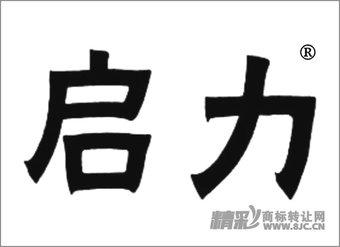 03-1534 启力