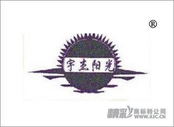11-1980 宇杰阳光