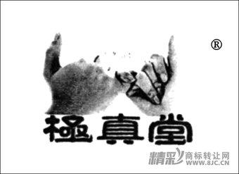 29-0696 极真堂