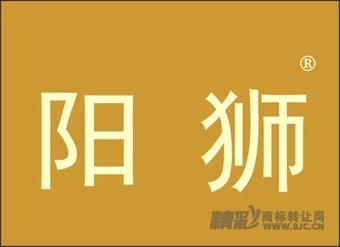 29-1133 阳狮