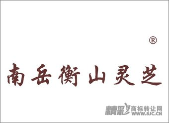 30-0991 南岳衡山灵芝
