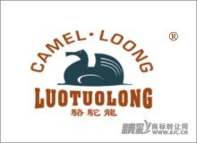 28-0388 CAMEL LOONG