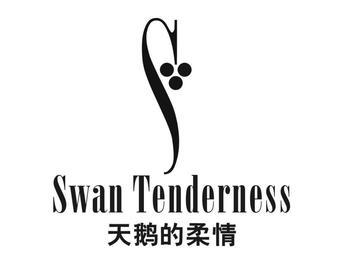 5-129744 天鹅的柔情 SWAN TENDERNESS