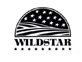 22-113613 WILDSTAR