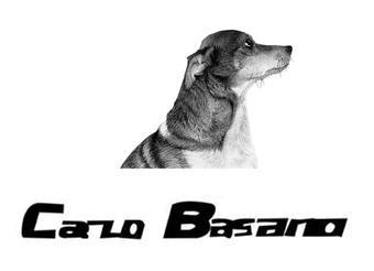 40-114347 CARLO BASANO
