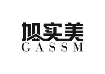 4-141760 加实美 GASSM