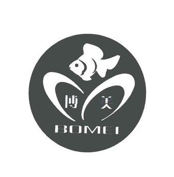 20-166205 博美