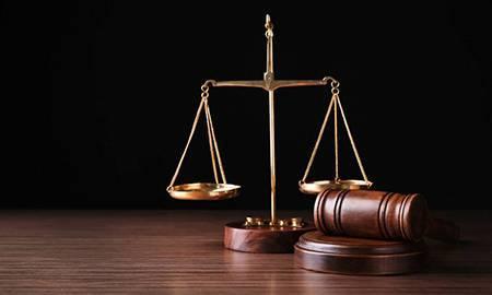 商标许可合同相关法律规定