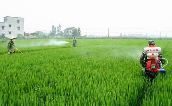 农药商标的注册流程是什么?