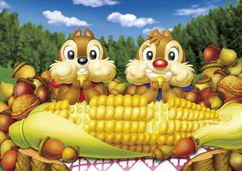 购买一个玉米种子商标需要哪些流程?