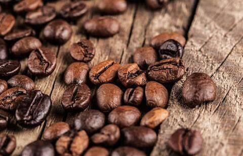 购买一个咖啡豆商标需要多少钱