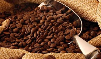 咖啡豆商标属于多少类?